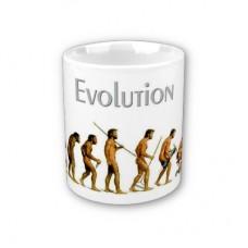Šalica - šaljiva -evolucija